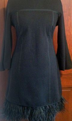 Long Sleeve Mock Neck Dress with Feather Details